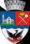 Consiliul Local Buzau
